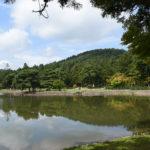 世界遺産毛越寺庭園3